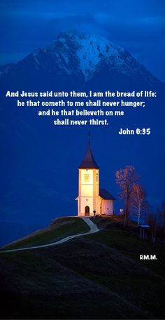 John 6 35, Bible Promises, Jesus Quotes, Sayings, Life, Lyrics, Word Of Wisdom, Idioms, Quote