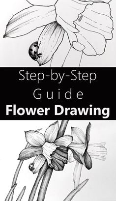 Learn to draw flowers with pens. Tips and techniques for drawing flower art with many examples. Flower types and drawing styles tutorial. Pencil Drawings Of Flowers, Drawing Flowers, Simple Canvas Paintings, Beautiful Paintings, Flower Types, Flower Art, Fine Art Drawing, Art Drawings, Learn To Draw Flowers