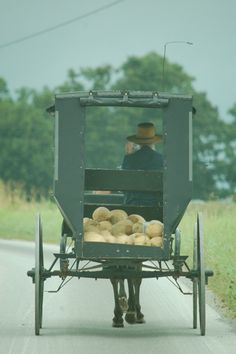 WHITTLE: Amish market days big business in Lawrence County | Dan Whittle, Amish, Voices