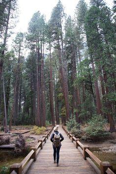 Yosemite National Pa