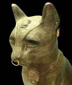 Sekhmet Egyptian Goddess of War Sculpture, STU-Home, Cats In Ancient Egypt, Egypt Cat, Ancient Egyptian Religion, Ancient History, European History, Ancient Aliens, Ancient Greece, American History, Amenhotep Iii