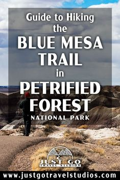 The Blue Mesa Trail in Petrified Forest National Park is a fantastic short hike. Our blog on this great hike in Petrified Forest will help you know what to do and what to expect while you are out on your hike! Petrified Forest National Park, Arizona Travel, The Visitors, Where To Go, Just Go, Trail, National Parks, Bucket, Hiking