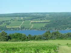 The East Bank of Seneca Lake, NY