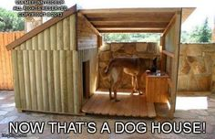 Now that's a dog house..