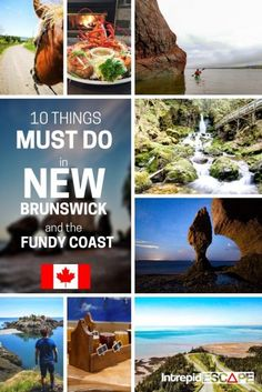 10 things you Must Do in New Brunswick & the Fundy Coast, Canada - Intrepid Escape - 2020 World Travel Populler Travel Country East Coast Canada, Hopewell Rocks, New Brunswick Canada, Canada Travel, Canada Trip, Atlantic Canada, Visit Canada, Whale Watching, Nova Scotia