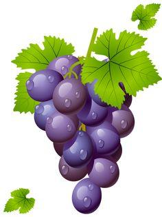 Grape with Leaves PNG Clipart Picture Fruit Clipart, Food Clipart, Première Communion, Fruits Drawing, Fruit Illustration, Cute Fruit, Fruit Painting, Clip Art, Fruit Art