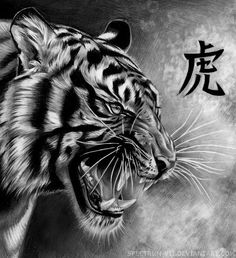 Art by Spectrum-VII on deviantart Lion Tattoo, Cat Tattoo, Tattoo Drawings, Body Art Tattoos, Sleeve Tattoos, Tiger Artwork, Japanese Tiger, Tiger Tattoo Design, Tiger Pictures