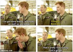 The Royal Family Ladies and Gentlemen