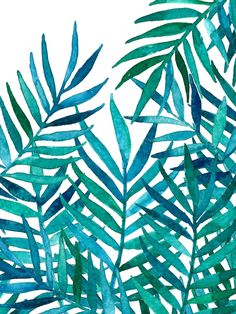 Watercolor Palm Leaves on White Art Print