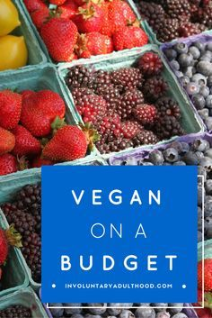 Many people think eating vegan is expensive, but that's just not true! Here's an easy grocery list to shop vegan on a budget.