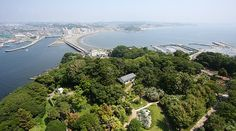 Enoshima Travel Guide
