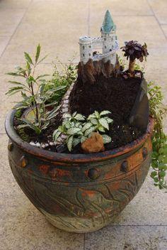Indoor Mini Gardens | The Mini Garden Guru - Your Miniature Garden Source