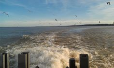 Looking out from the Jamestown/Scotland Virginia ferry