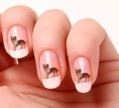 Chihuahua Nail Art Stickers #2