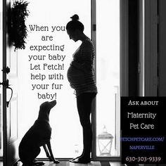 Ask about Maternity Care.. A pet sitter will be readyto visit your pet while your at the hospital and after!  fetchpetcare.com/naperville  #maternitycare #momtobe #mom #dogmom #Naperville   Fetch! Pet Care of Naperville in Naperville, IL