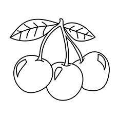 Top 10 Free Printable Cherry Coloring Pages Online Coloring