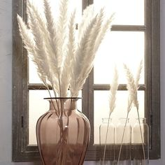 15 Pcs Bulrush Natural Dried Small Pampas Grass Phragmites Artificial Plants Wedding Flower Bunch for Home Decor Fake Flowers Dried Flower Bouquet, Dried Flowers, Grass Decor, Wooden Vase, Bunch Of Flowers, Nature Decor, Home Wedding, Artificial Plants, Flower Decorations