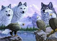 Wolves and mountains | Wolves