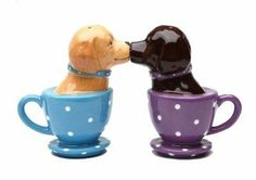 Labrador Retriever Teacup 3 1/2'' tall Magnetic Salt and Pepper Shakers by Pacific Trading. $11.99. Over 20 different style to choose from. Magnets will hold them together. Fun and cute styling. Material: ceramic. Dishwasher Safe. Magnetic insert to keep shakers together. Great Gift Idea for Pet Lover. Come with a gift box. Labrador Retrievers Tea Cups Magnetic Salt & Pepper Shakers. Make the perfect gift!