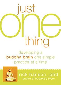 Just One Thing: Developing a Buddha Brain One Simple Practice at a Time by Rick Hanson PhD http://www.amazon.com/dp/1608820319/ref=cm_sw_r_pi_dp_e6IAvb1JAK69E