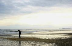 Científicos afirman que marea roja en el sur chileno va en retirada