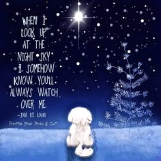 Princess Sassy Pants and Co 💫 Night Sky Stars, Night Skies, Sassy Quotes, Jokes Quotes, Best Friend Miss You, Buddha Doodle, Pet Loss Grief, Chibird, Inspirational Qoutes