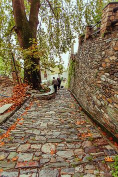 Makrinitsa village, Pelion mountain by brendaq Greece Vacation, Greece Travel, Myconos, Places In Greece, Greek Beauty, Fall Pictures, Thessaloniki, Greek Islands, Belle Photo