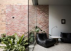Rose Street by Eastop Architects Australian Architecture, Australian Homes, Interior Architecture, Rose Street, California Bungalow, Terrazzo Flooring, Compact Living, Contemporary Interior, Traditional House