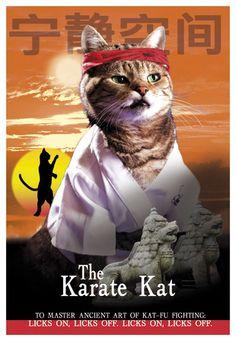 The Karate Kat