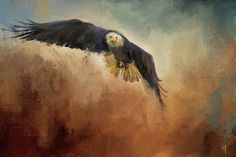 ~When you see what you want, you better grab it fast, for it can be gone in an instant.~   This original wildlife painting by Jai Johnson features a bald eagle in flight, swiftly approaching his prey.