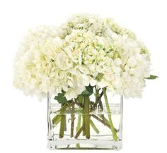 Natural Decorations, Inc. - Hydrangea White, Glass Cube