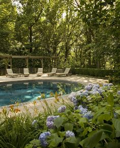 Belgard Pavers With Pool Design, Pictures, Remodel, Decor and Ideas - page 8