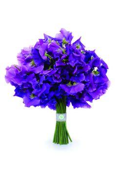 Wedding Magazine - Lookbook: purple wedding flower ideas