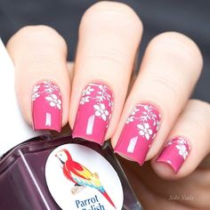 """Parrot Polish """"Black Cherry"""" & stamping MoYou London Pro Collection 08"""