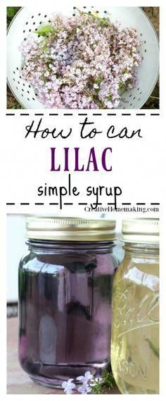 Lilac Simple Syrup Canning Recipe Easy recipe for canning lilac simple syrup for cocktails, flavored iced tea, flavoring kombucha, and more. Easy canning recipe for beginners. Easy Canning, Canning Recipes, Brownie Desserts, Vegan Desserts, Flower Food, Recipes For Beginners, Fast Recipes, Healthy Recipes, Chutney