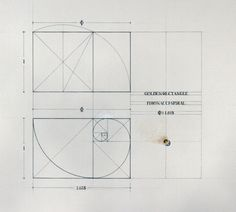 11 Best Golden Ratio Images Coloring Books Coloring Pages Golden