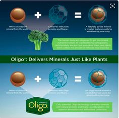 Every Peak Performance Pack is powered by double-patented Oligo mineral delivery technology. By binding minerals and natural proteins and fibers just like plants do, it presents minerals to your body in a way it can best absorb and use them. Oligo is a proprietary Melaleuca innovation that can't be found anywhere else.