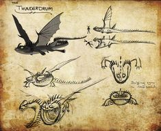 HTTYD Dragon Manual | HTTYD: Thunderdrum by ~Iceway on deviantART