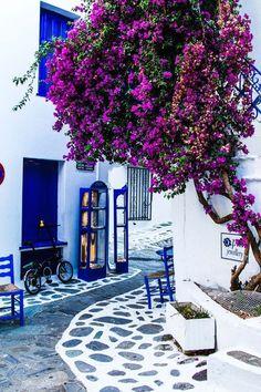 "dreamingofgoingthere:  ""Skiathos, Greece  """