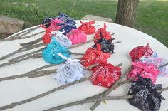 Campfire party favors.  Colorful bandannas and fill them with candy.  Tie around branch sticks.