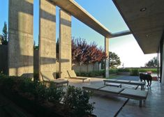 concrete-residential-architecture-designed-spacious-7-outdoor-lounge.jpg
