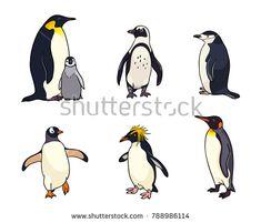 Set of different penguins. Vector illustration. EPS8