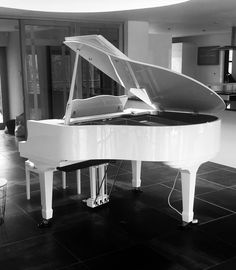 Wilh Steinmann Grand with Pianodisc iQ HD wireless system from Chiltern Pianos, Bovingdon.