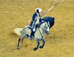 Lusitano - Portuguese bullfight -