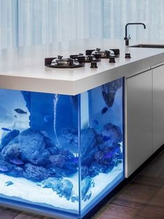 Aquarium sustainable kitchen design by Robert Kolenik. The design world has examples of incredible solutions. With regard to creativity today we propose an excellent sample that combines aquarium and design. It is a kitchen island . Minimalist Kitchen, Minimalist Interior, Minimalist Decor, Minimalist Living, Minimalist Bedroom, Modern Minimalist, Dutch Kitchen, Crazy Kitchen, Smart Kitchen