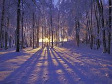 How to Ease the Pain of Isolation During the Holidays  Three simple practices can help you feel less alone.  Published on November 21, 2011 by Toni Bernhard, J.D. in Turning Straw Into Gold