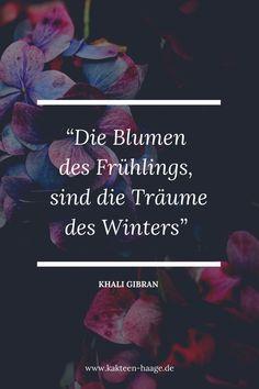 """Zitat von Khali Gibran: """"Die Blumen des Frühlings, sind die Träume des Winters."""" Wir sind jedes Jahr wieder begeistert, wie farbenfroh unsere Gewächshäuser vom Frühling bis in den Spätsommer sind. #Kakteen blühen so vielfältig! #KakteenHaage #Haagelife #Zitat #Quote #Kaktus #ilovecactus #cactusquote #flower #blumenspruch #blüte"""