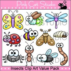 Insects Clip Art Value Pack by Pink Cat Studio