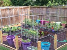 Monet's garden after one month! She's using 4 of our Garden Grid watering system for her raised gardens, and they are looking great!