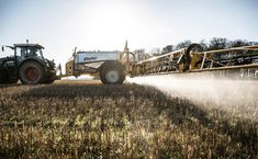MadalBo: El glifosato de Monsanto es el desmalezador más us...